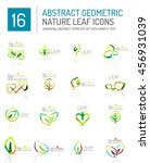 geometric leaf icon set. thin... | Shutterstock . vector #456931039
