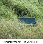 Bench Almost Hidden In The Tal...