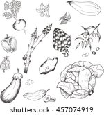 vegetables collection. set of... | Shutterstock .eps vector #457074919
