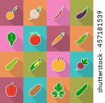 vegetables flat icons with the... | Shutterstock . vector #457181539