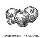 Apple Engraving Style Raster...