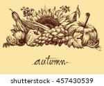 autumn fruits and vegetables... | Shutterstock .eps vector #457430539