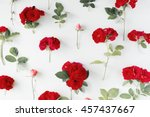 red roses on white background.... | Shutterstock . vector #457437667