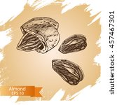 sketch almonds. illustration... | Shutterstock .eps vector #457467301