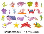 set of seaweed and sea animals... | Shutterstock .eps vector #457483801
