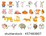 Stock vector set of animals illustrations collection of forest and domestic animals set of comic bears 457483807
