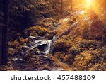 beautiful forest sunset ... | Shutterstock . vector #457488109