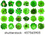 collage of natural and surreal... | Shutterstock . vector #457565905