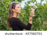 outdoors portrait of a... | Shutterstock . vector #457583701