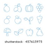 fruit icons  outline icons