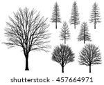 vector bare tree isolated on a... | Shutterstock .eps vector #457664971