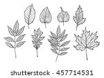 Hand Drawn Vector Illustration...