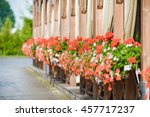 Red Flowers In Pots In Garden