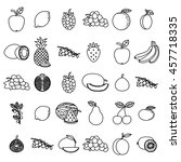hand drawn fruits set on white... | Shutterstock .eps vector #457718335