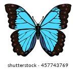 isolated morpho butterfly on... | Shutterstock .eps vector #457743769