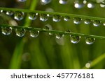 water drops on wet grass with... | Shutterstock . vector #457776181