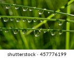 water drops on wet grass with... | Shutterstock . vector #457776199