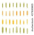 wheat ear icon set  leaves... | Shutterstock .eps vector #457830805