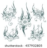 vector hand drawn chamomile... | Shutterstock .eps vector #457932805