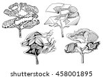 stylized trees  an illustration ... | Shutterstock . vector #458001895
