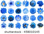collage of natural and surreal... | Shutterstock . vector #458010145