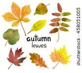 Watercolor Autumn Leaves Set....