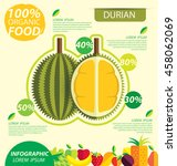 durian. infographic template.... | Shutterstock .eps vector #458062069