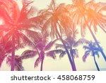 Coconut Tree At Tropical Coast...