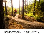 Mountain Biker Riding On Bike...