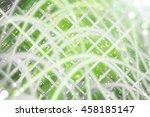 abstract green fractal... | Shutterstock . vector #458185147