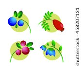 juicy tasty berries at sunrise | Shutterstock . vector #458207131