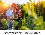 garden design with tablet... | Shutterstock . vector #458235895