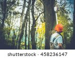 Unhealthy Tree Branches Cutting by Professional Forestry Worker. - stock photo