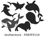 cartoon killer whale.find the...   Shutterstock .eps vector #458395114