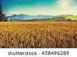 wheat field. golden ears of... | Shutterstock . vector #458496289