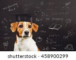 smart dog with glasses near a... | Shutterstock . vector #458900299