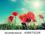 picturesque scene. closeup... | Shutterstock . vector #458975239