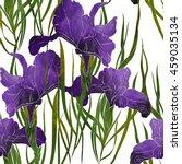 imprints irises and grass. hand ... | Shutterstock . vector #459035134