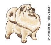 vector illustration of a fluffy ... | Shutterstock .eps vector #459058654