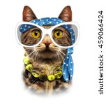 hippie cat illustration.cartoon ... | Shutterstock . vector #459066424