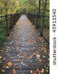 Foot Bridge  Autumn In The Par...