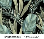 tropical colorful background... | Shutterstock . vector #459183664