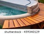 the ultimate garden accessory a ... | Shutterstock . vector #459340129