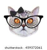 cat print.cat pattern.t shirt... | Shutterstock . vector #459372061