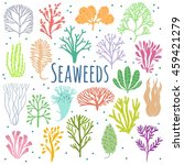 hand drawn seaweed  coral set... | Shutterstock .eps vector #459421279