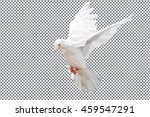 low polygon of white dove on... | Shutterstock .eps vector #459547291
