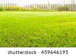 blur of fresh green grass with...   Shutterstock . vector #459646195