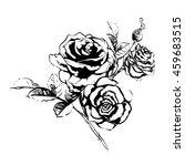 garden rose | Shutterstock . vector #459683515