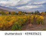 Mountain landscape with vineyards near Alushta city at fall season - Crimean peninsula