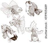 goldfish   set of vector... | Shutterstock .eps vector #459905689